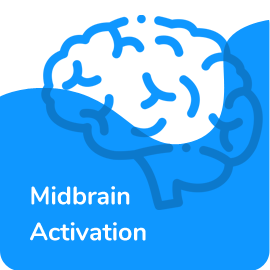 Midbrain activation course